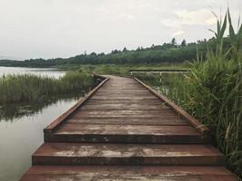 de houten pier begroeid met riet op het meer van Sokcho City, Zuid-Korea foto