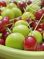 klaar om te eten en gewassen zure kersen en pruimen op een groen bord foto