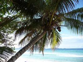 lang strand bij tortola - britse maagdeneilanden foto
