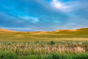glooiende heuvels en landbouwgrond in Palouse Washington foto