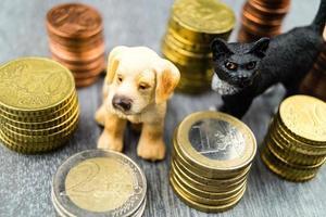 wat zijn de kosten van een huisdier? foto