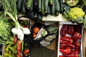 het voedsel zonder afvalzak foto