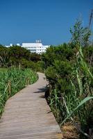 voetgangerspad op het strand van migjorn in formentera in spanje foto