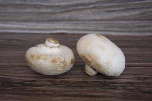champignons van dichtbij. champignon champignons foto