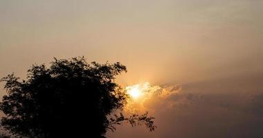 abstracte landschapszonsondergang met silhouet van bomen voor aardachtergrond foto