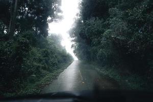 weg in een tropisch bos, de weg naar het tropische vochtige bos foto