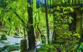 tar nim waterval tempel geheime magische tuin koh samui thailand. foto