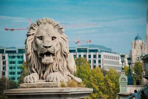 leeuwenstandbeeld bij de kettingbrug, boedapest, hongarije foto
