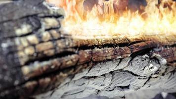 brandend vuur op een verbrande boomstam foto