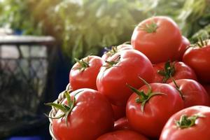 biologische groente sappige tomaat in de supermarkt foto