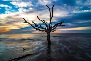 prachtige natuur op jachteiland South Carolina foto