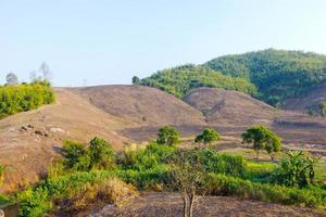 ontbossing op de berg voor landbouw in chiang rai, thailand. foto