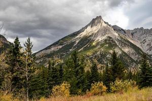 monteer allen. Bow Valley-wildernisgebied, Alberta, Canada foto