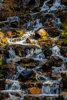 o'shaunessy valt. Bow Valley-wildernisgebied, Alberta, Canada foto
