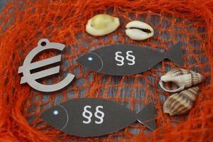 europese visserijwet foto
