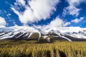 langs de weg. provinciaal park spray valley foto