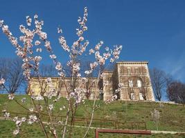 castello di rivoli, italië foto
