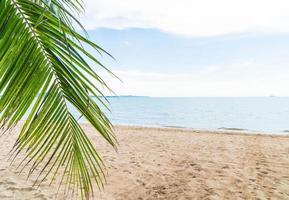 palm en tropisch strand bij pattaya in thailand foto