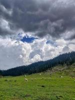 bangusvallei in kupwara kasjmir foto