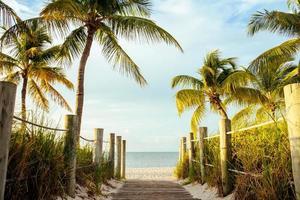 een houten wandeling naar het strand. foto