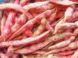 cranberry bonen achtergrond foto
