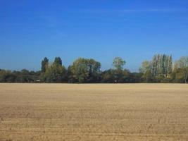 platteland bij cambridge foto