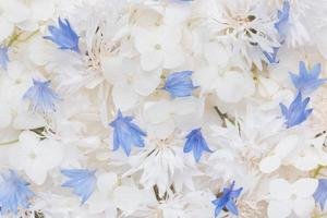 de compositie mooie bloemen behang foto