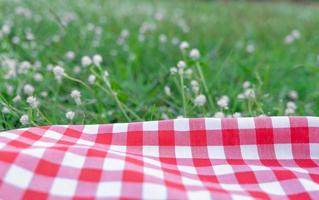 rode geruite tafelkleedtextuur met op groen gras in de tuin foto