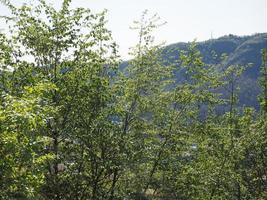 heuvels in como, italië foto