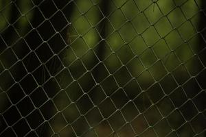 mooie achtergrond van een metalen hek in de tuin foto
