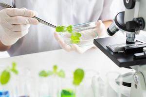 wetenschapper die experiment doet met nieuw voedsel en medicijnen in het laboratorium foto