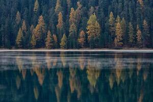 herfstbos wordt weerspiegeld in het meer foto