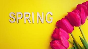 lente-concept. boeket tulpen op kleurrijke achtergrond foto