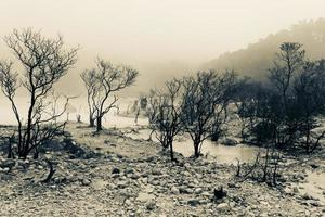 dood land bij de krater foto