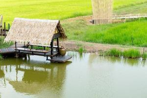 houten paviljoen in padieveld. Ayutthaya-oriëntatiepunt in Thailand. foto