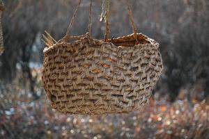 korea traditionele handgemaakte rieten mand textuur. foto