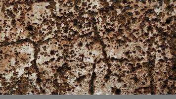oude grungy textuur, grijze betonnen muur foto