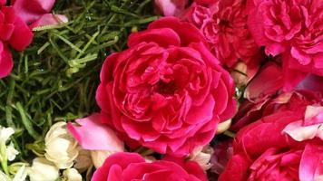 rode rozen worden gebruikt voor traditionele evenementen foto