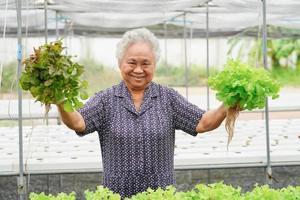 Aziatische vrouw met verse salade groente in boerderij. foto
