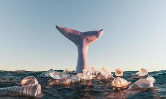 walvisstaart in de oceaan omringd door plastic flessen foto