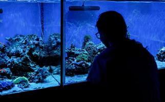 vrouw silhouet kijken naar aquaria met vissen in oceanarium foto