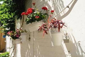 kleurrijke bloemenstraat met witte bakstenen muur in mediterrane stad foto