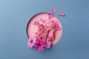 plat leggen mooie compositie bloemen foto