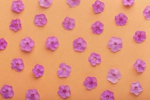 het platliggende assortiment bloemen foto