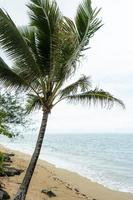 adembenemend landschap van Hawaï met blauwe zee foto