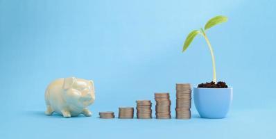 geld groeien financieren en geld besparen investeringen stapelen munten foto