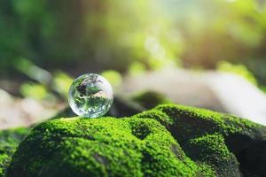 een kleine ronde bol die op een rots rust en een klein gras heeft foto