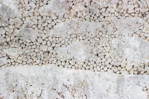 textuur van de betonnen muur van het blok foto