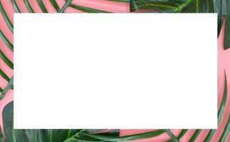 witte ruimte op groene bladeren en roze achtergrond foto