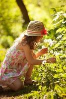 klein meisje verzamelt paardebloemen foto